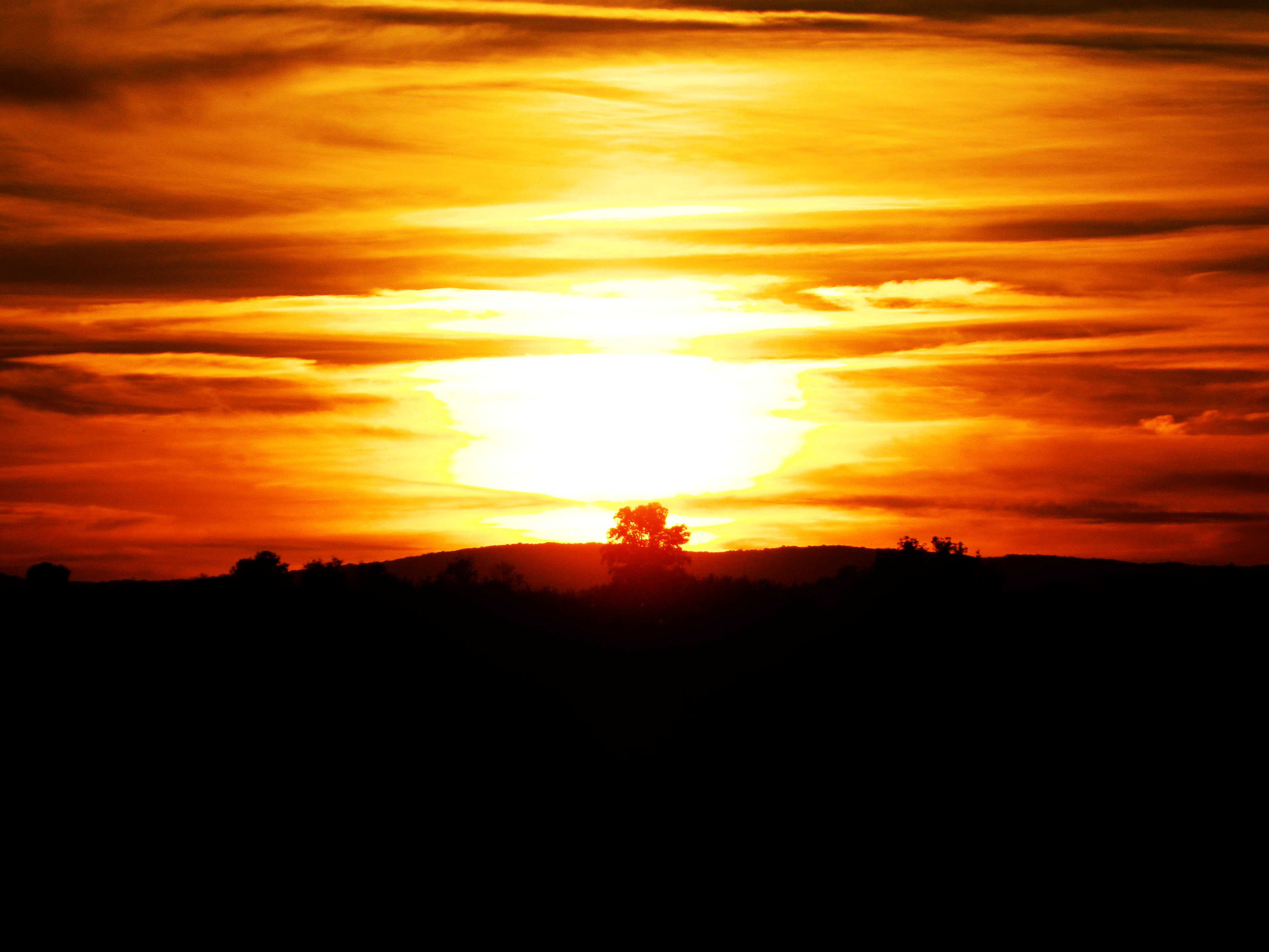 Zalazak sunca  - Page 6 284472-7545724-r