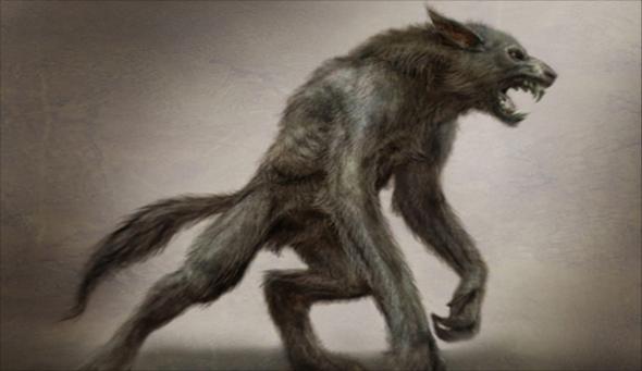 Moja hudba - Wolfpack
