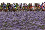 Cestná cyklistika, 1. časť