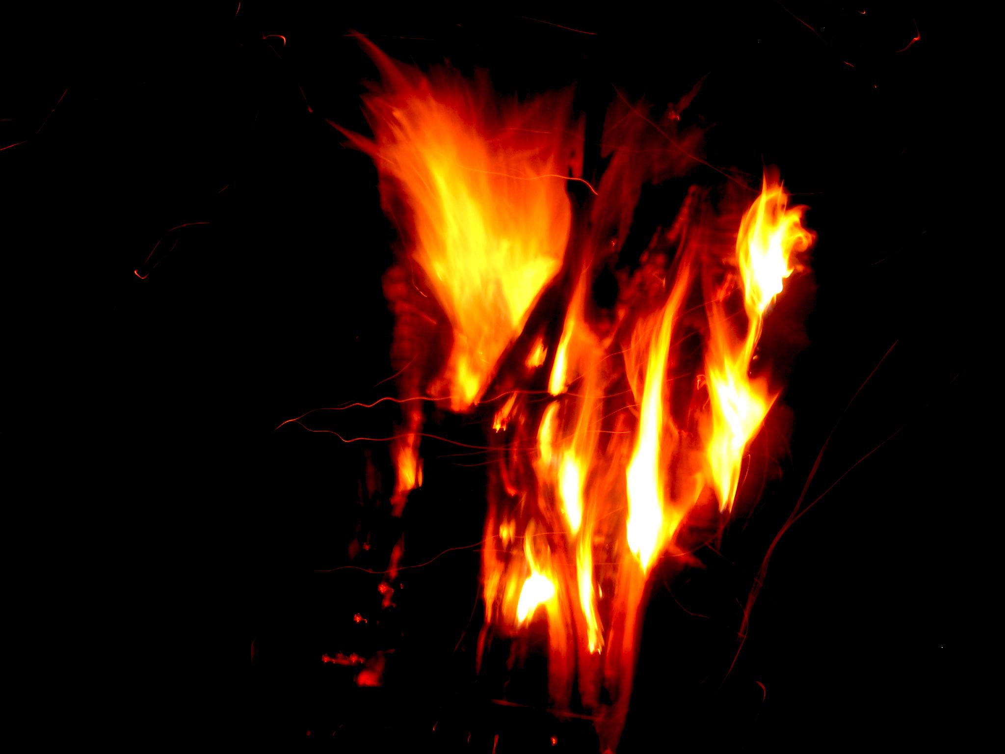 Filii Corvi – 08 – Perie v plameňoch