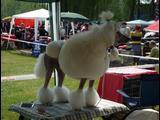 Výstava psíkov 3.5.2009